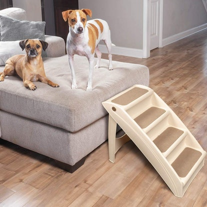 PetSafe Foldable Steps