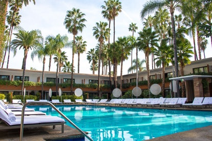 A blue hotel pool is surrounded by white chaises and towering California palm trees at The Hollywood...