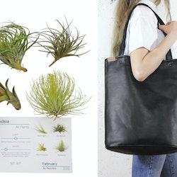 A plant subscription kit or a vegan work bag make excellent holiday gifts for vegans