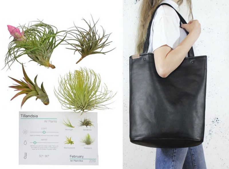 A plant subscription kit or a vegan work bag make excellent holiday gifts for vegans