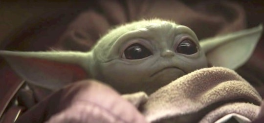 Baby Yoda is the star of The Mandalorian, the new live-action Star Wars series on Disney+