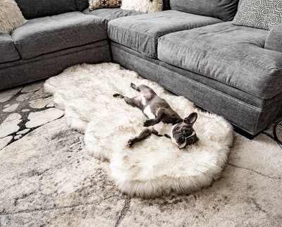 PupRug Runner Faux Fur Memory Foam Bed