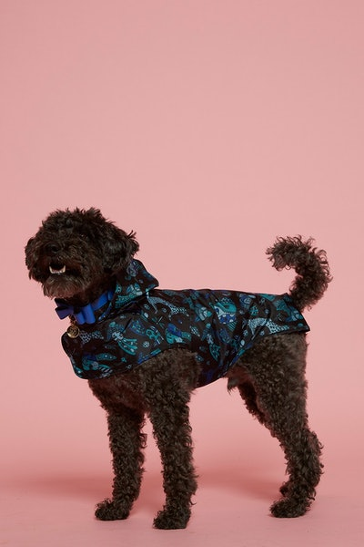 Animal Print Dog Raincoat