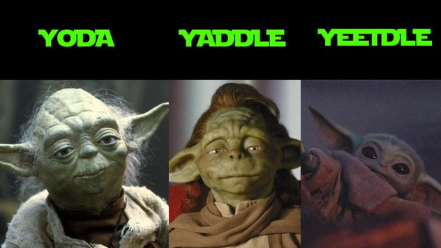 A picture of yoda, another of the species, Yaddle, and baby, Yeetle