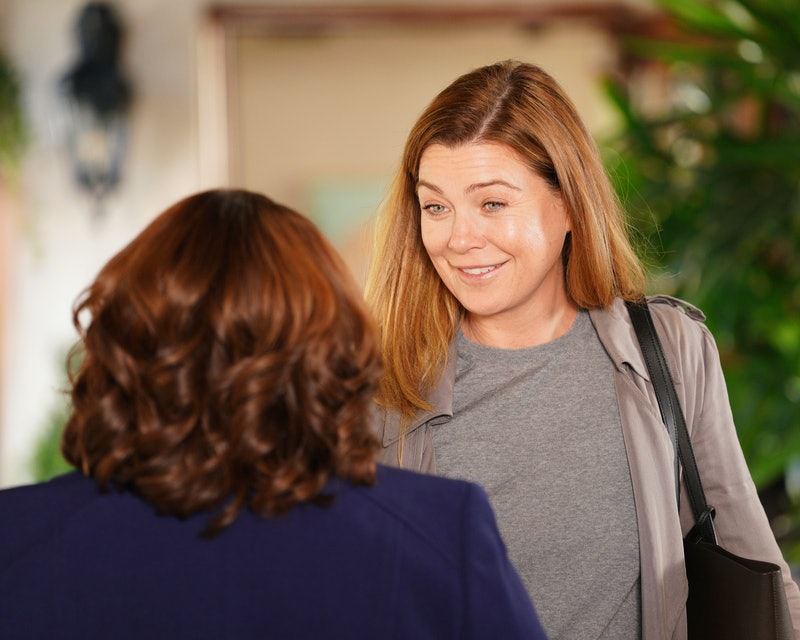 The 'Grey's Anatomy' mid-season fall finale introduced a possible new love interest for Meredith (El...