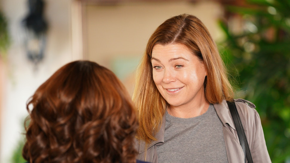 The 'Grey's Anatomy' mid-season fall finale introduced a possible new love interest for Meredith (Ellen Pompeo).