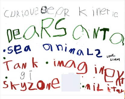 "A very young child's letter to Santa, asking for ""sea animals"" and ""sky zone."""