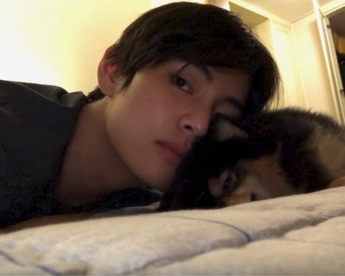 20 Photos of BTS and their pets, featuring V and his dog, Yeontan