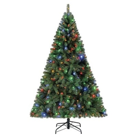 Holiday Living HL 6.5-FT 250-CCL Seneca Tree