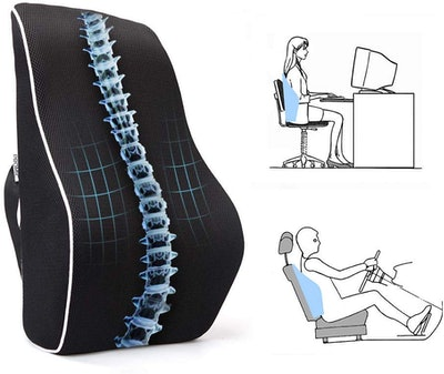 PROMIC Memory Foam Lumbar Support Back Cushion