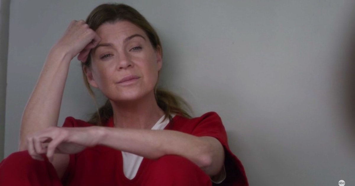 This Theory About Meredith's Cellmate Paula In 'Grey's Anatomy' Is A Lot