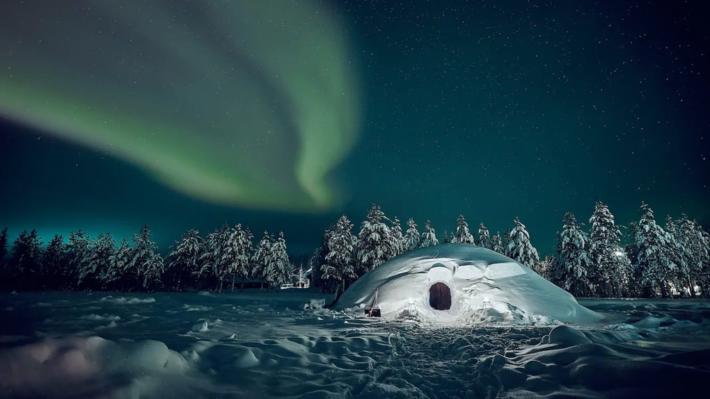 An igloo in the woods at nighttime in Finland has the Northern Lights shining above.