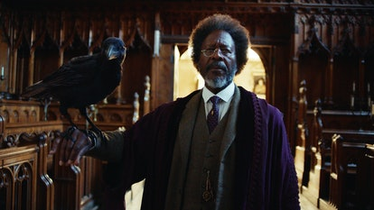 The Master's daemon is a raven in 'His Dark Materials'