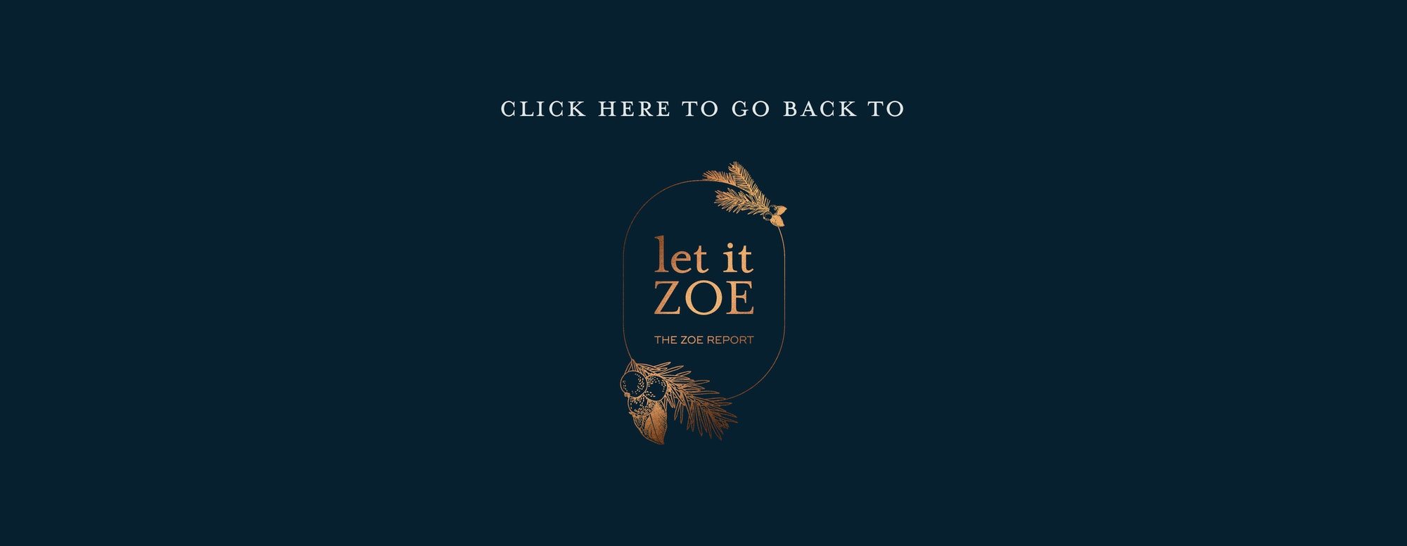 Click here to go back to the Let It Zoe homepage