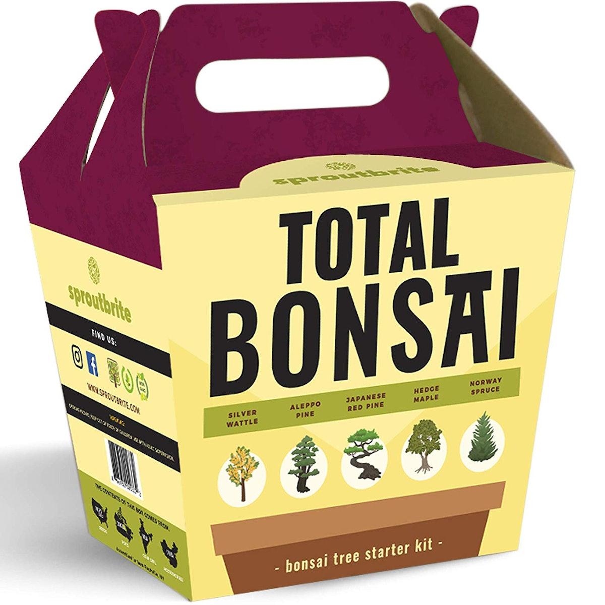 Sproutbrite Bonsai Tree Starter Kit