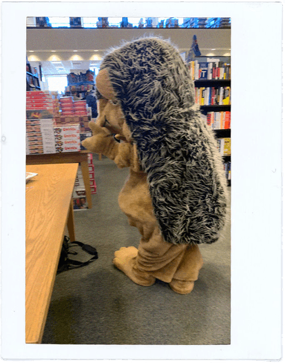 Hedgie hangs out in a Barnes & Noble