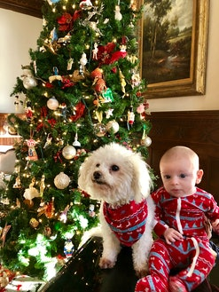 Baby and dog in matching christmas pajamas sit in front of tree