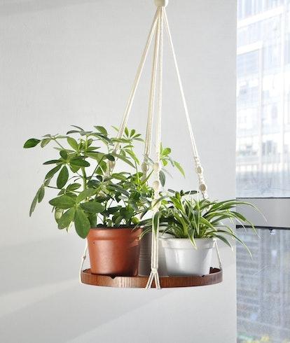 TIMEYARD Macrame Hanging Shelf