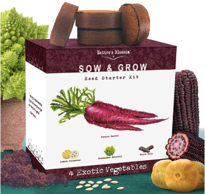 Nature's Blossom Exotic Vegetables Growing Kit (Set Of 4)