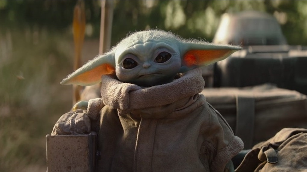 Baby Yoda from 'The Mandalorian' wears a jacket and looks toward his Mando on a sunny day.