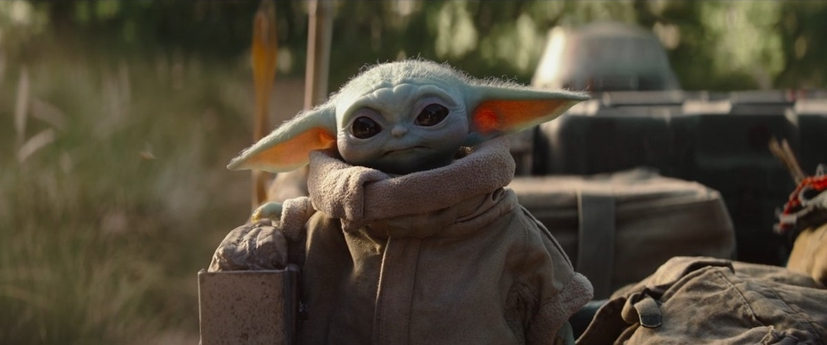 Baby Yoda from 'The Mandalorian' wears a jacket and looks toward his Mando on a sunny day.