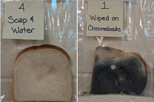 A school science experiment about the importance of hand-washing had some pretty surprising results.