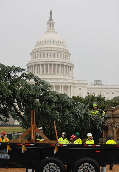 Workers deliver the 2018 U.S. Capitol Christmas Tree to the U.S. Capitol Building, Nov. 26, 2018, fr...