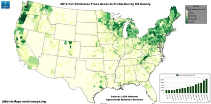 Christmas tree production is concentrated in cooler regions of the U.S.