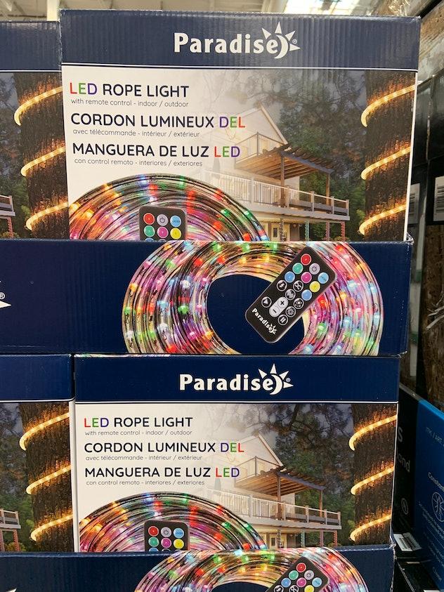Paradise LED Rope Light