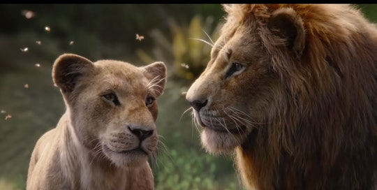 "The new ""Lion King"" movie will be coming to Disney+ in January."