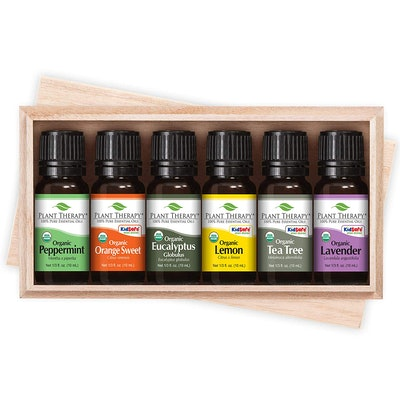 Plant Therapy Essential Oil Set (6-Pack)