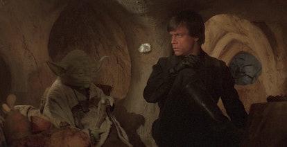 Yoda and Luke Skywalker in Star Wars: Return of the Jedi