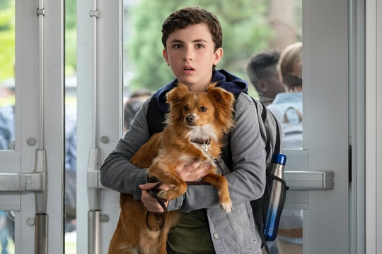 """Netflix's """"The Healing Powers Of Dude,"""" which centers around an 11-year old boy with social anxiety and his sarcastic emotional support dog, will drop in January."""