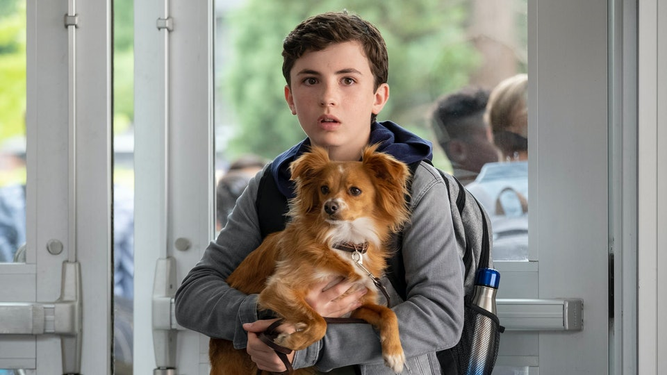 "Netflix's ""The Healing Powers Of Dude,"" which centers around an 11-year old boy with social anxiety and his sarcastic emotional support dog, will drop in January."