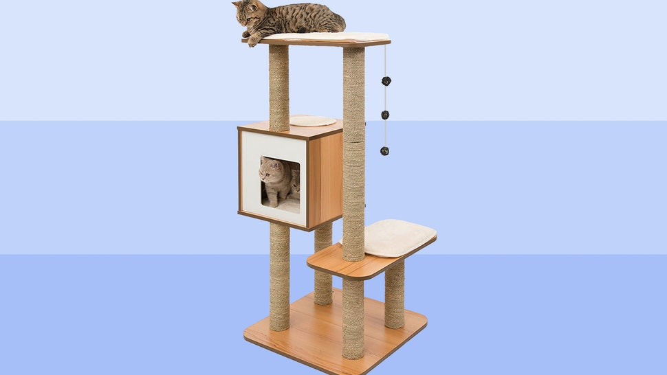 The 6 Best Cat Trees For Small Apartments