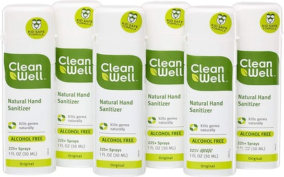 CleanWell Botanical Hand Sanitizer Spray (Pack of 6)