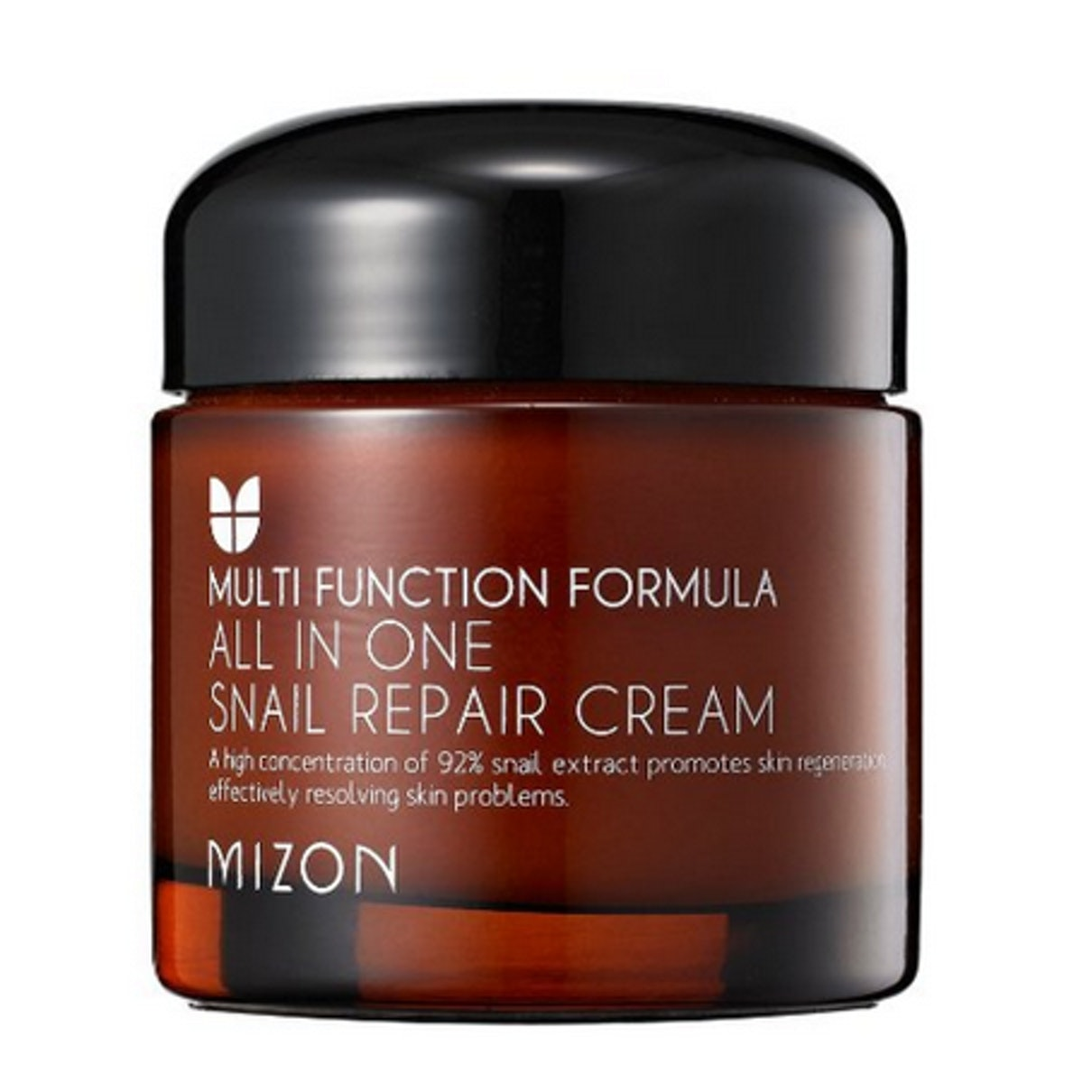 Mizon All In One Snail Repair Cream, Facial Moisturizer 75Ml