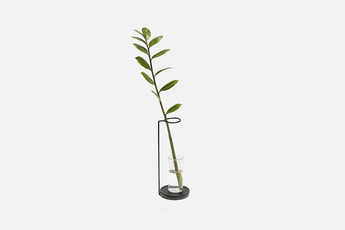 Minimal Glass Vase by HEM Design Studio