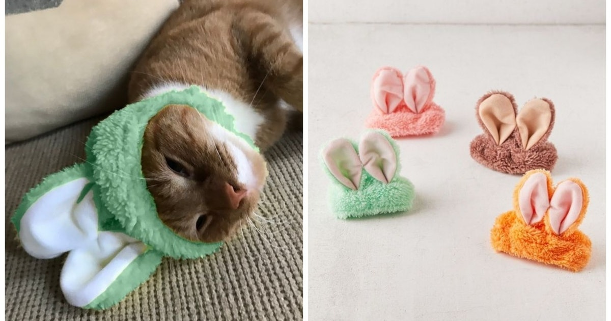Urban Outfitters Sells Cat Hats In A Bunch Of Ridiculously Cute Colors