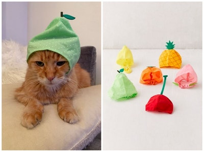 Fruit Cat Cap