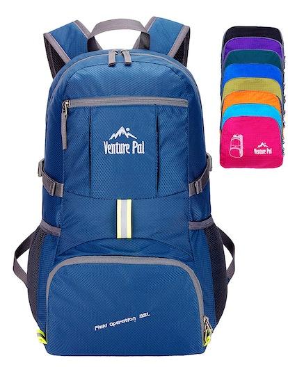 Venture Pal Hiking Daypack