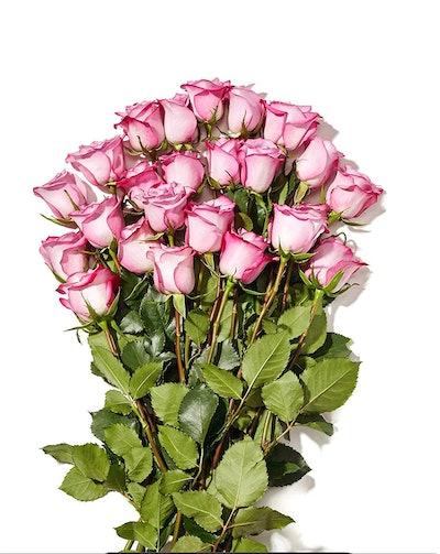 Whole Trade Guarantee Double Dozen Roses