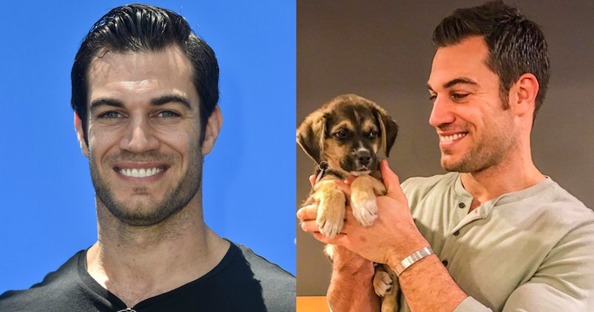 """""""Sexy Vet"""" Evan Antin's Instagram Account Is So Much More Than Adorable Puppy Photos"""