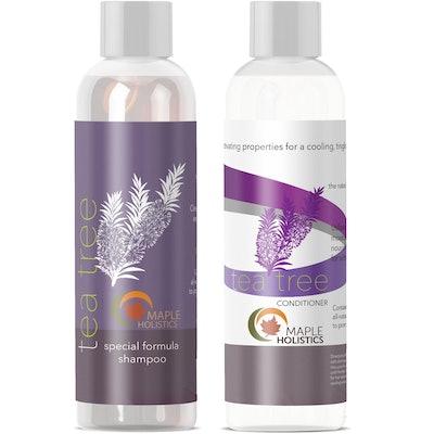 Maple Holistics Tea Tree Oil Shampoo & Conditioner, Natural Anti Dandruff Treatment