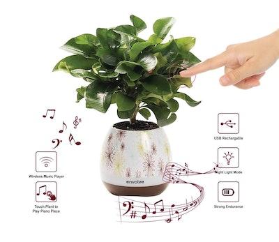 Envolve Bluetooth Music Flower Pot