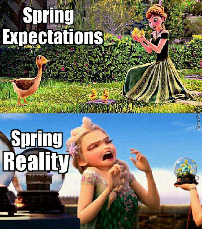 15 Spring Equinox 2019 Memes To Celebrate The Return Of ...