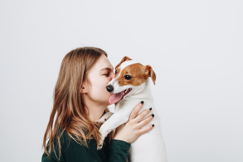 Seeing a cute dog has an actual affect on your brain.