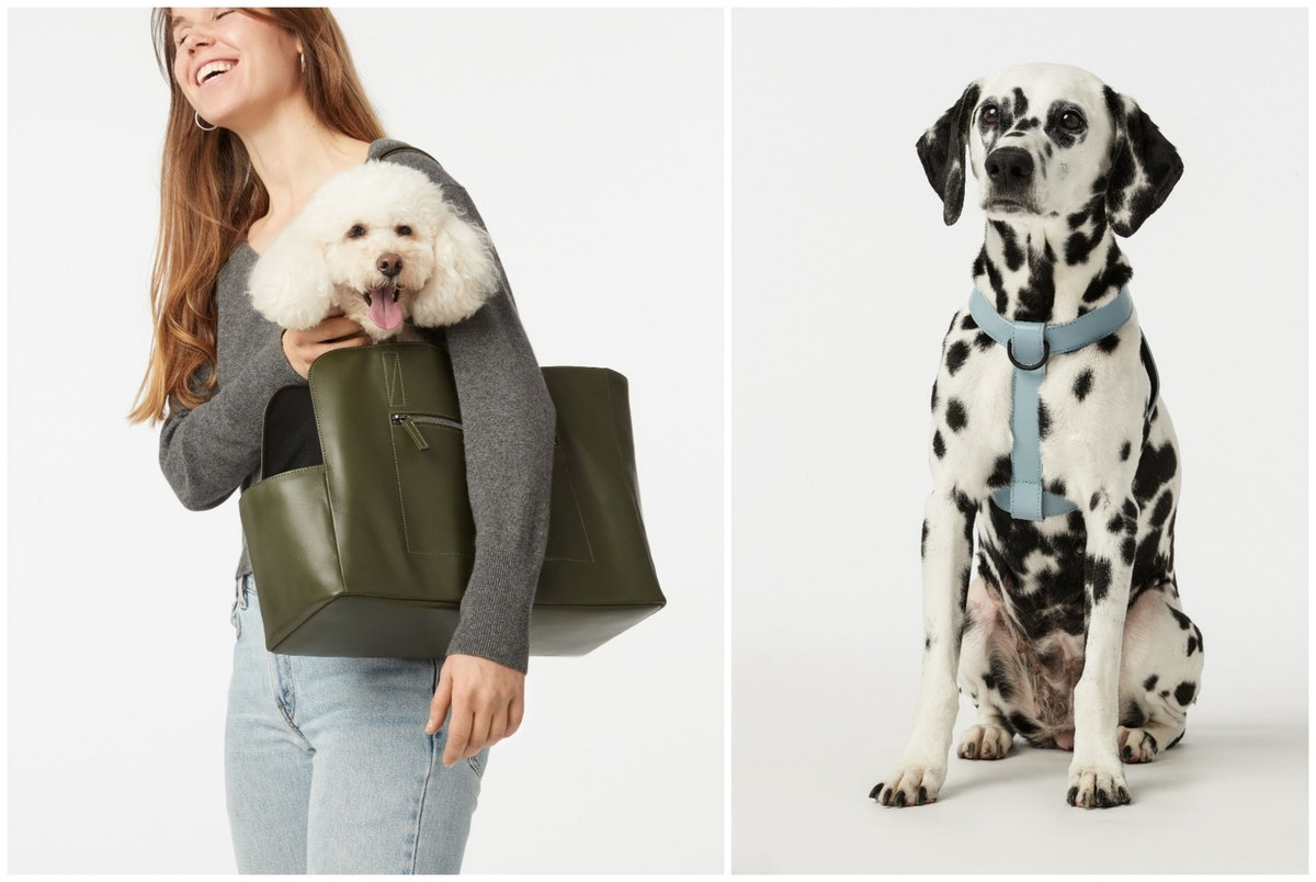 Fable, A New Pet Brand, Just Launched A High Quality Pet Line In Beautiful Pastels