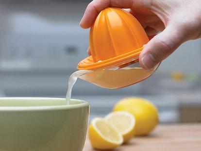 Progressive Dome Citrus Juicer
