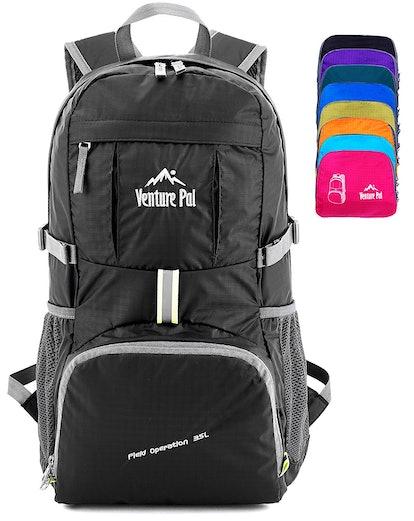 Venture Pal Lightweight Daypack